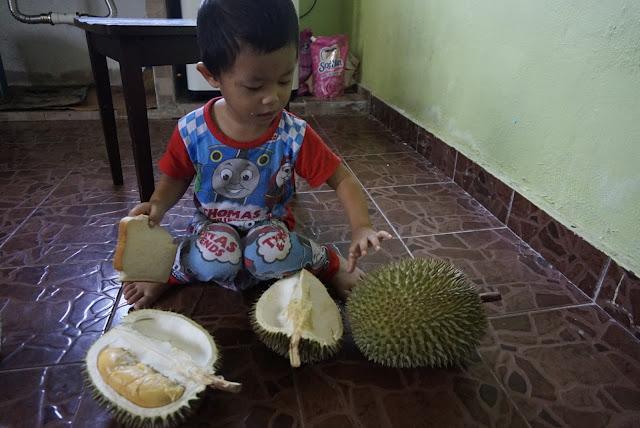 durian IOI,musim durian,cara bersyukur dengan betul