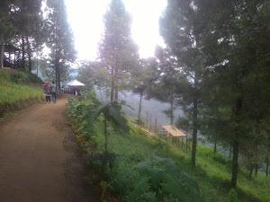 Review Wisata Goa Pinus Di Malang Batu