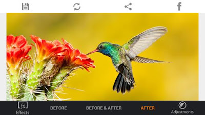 HDR FX Photo Editor 1.7.6 APK for android terbaru