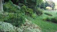 Shade plantings, Pardee Rose Garden - East Rock Park, New Haven, CT