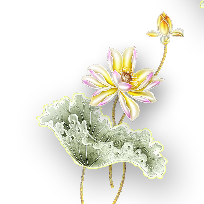 Yellow lotus flowers illustration, Nelumbo nucifera Grey Gold, Lotus, flower Arranging, 3D Computer Graphics png free png