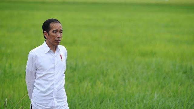 Prabowo Garap Lumbung Pangan, Jokowi: Pertahanan Tak Hanya Urusan Alutsista