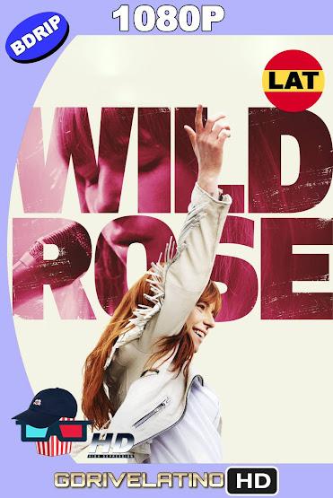 Wild Rose (2018) BDRip 1080p Latino-Ingles MKV