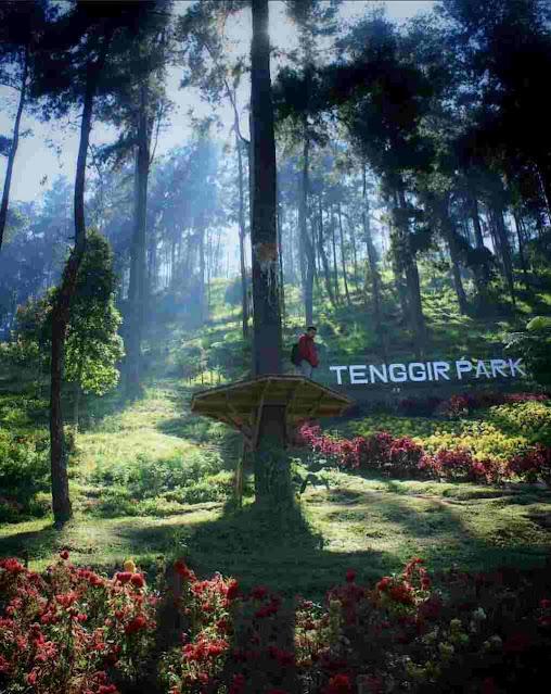 Tenggir Park Karanganyar: Lokasi, Rute, dan Harga Tiket