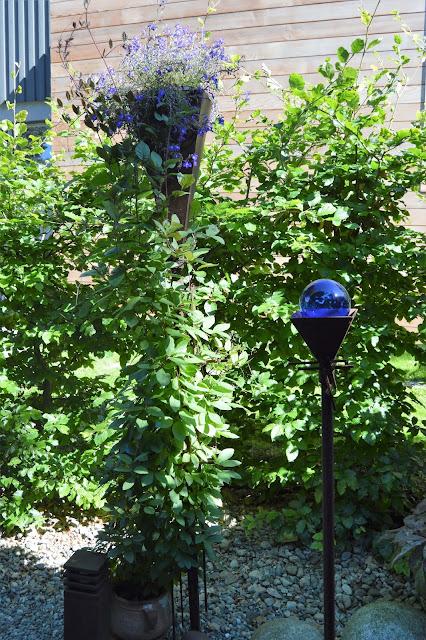 Se en hage i harmoni med seg selv - Stilleben ved inngangspartiet. Furulunden.