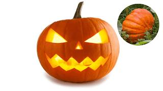 Création des décorations parfaites de citrouille d'Halloween