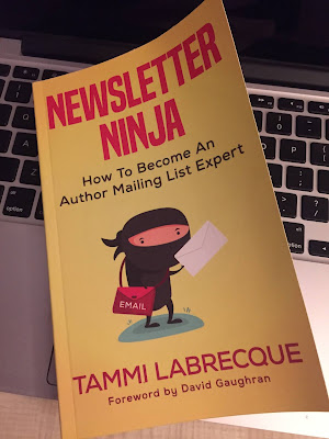 Yellow book (Newsletter Ninja by Tammi Labrecque) lying on a laptop keyboard