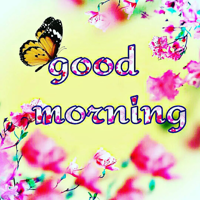 very beautiful good morning images hd