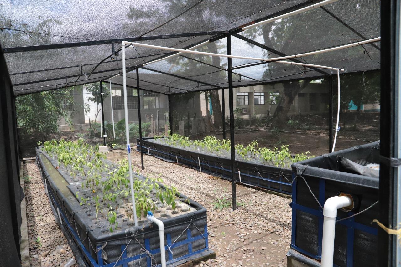 hoyennoticia.com, En La Guajira SENA inauguró Unidad Acuícola y Agrícola