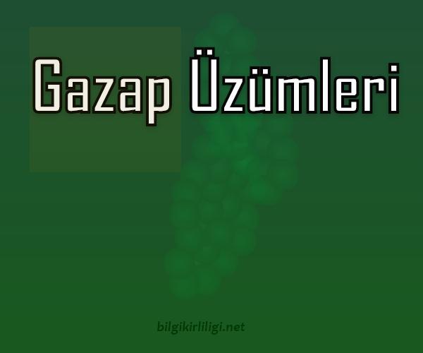 Gazap Üzümleri Özeti