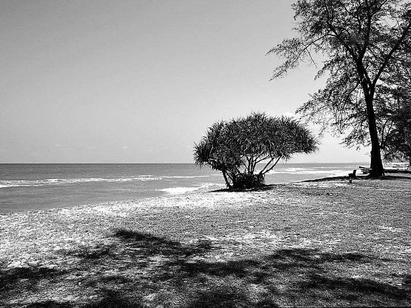 Quiet On The Beach 01