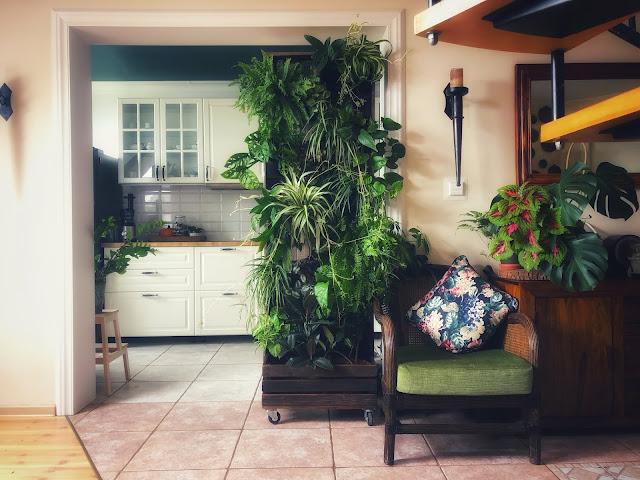Domowy ogród wertykalny - zrób to sam!