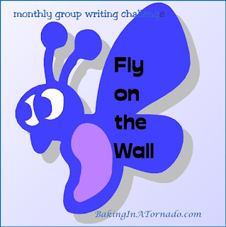 Fly on the Wall | graphic designed by and property of www.BakingInATornado.com | #MyGraphics