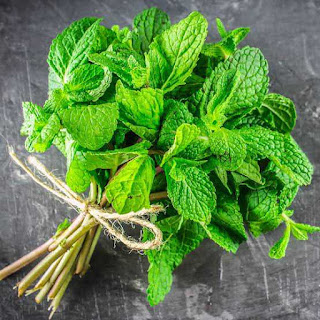 Some important herbs To Accelerate Your Weight Loss