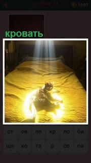 651 слов под солнечными лучами на кровати лежит кошка 11 уровень