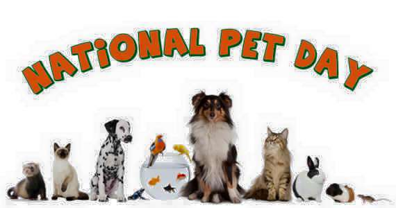 National Pet Day Wishes Pics