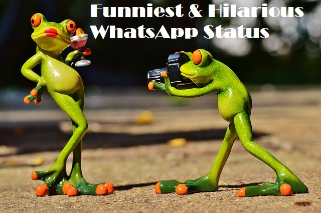 WhatsApp Funny Statuses to make friends laugh.