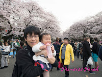 上野公園賞櫻