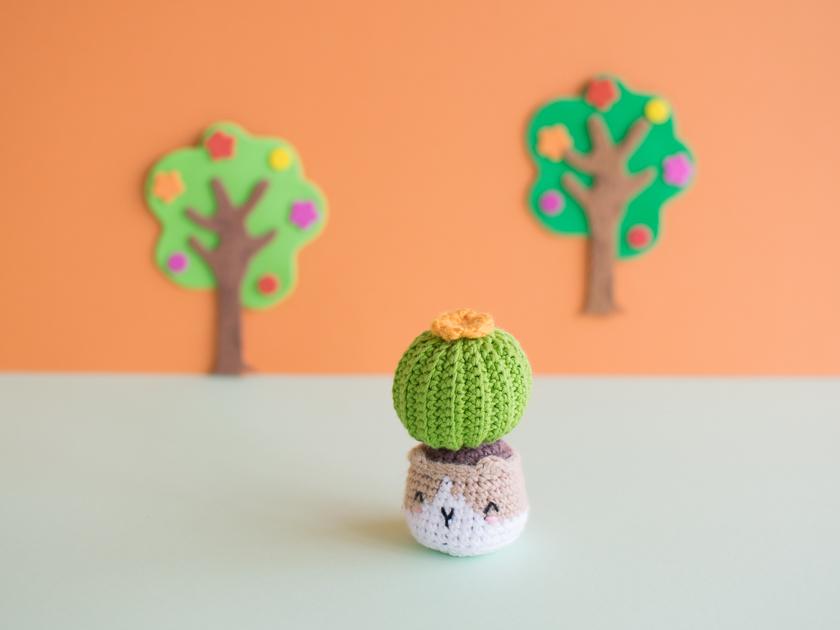 Félix, el cactus-gato