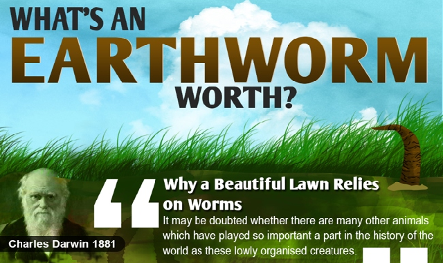 What's an Earth Worm Worth? #infographic