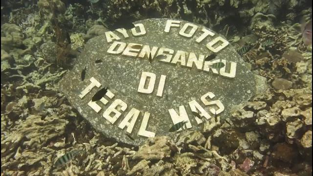 tegal mas island