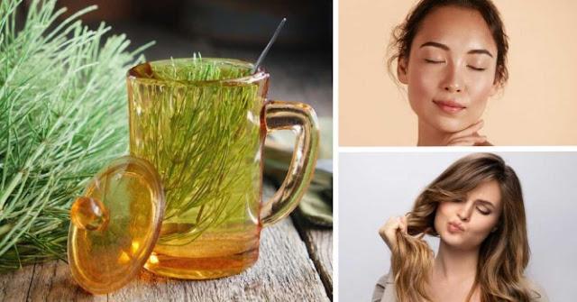 Comment utiliser la prêle pour rajeunir la peau et renforcer les cheveux