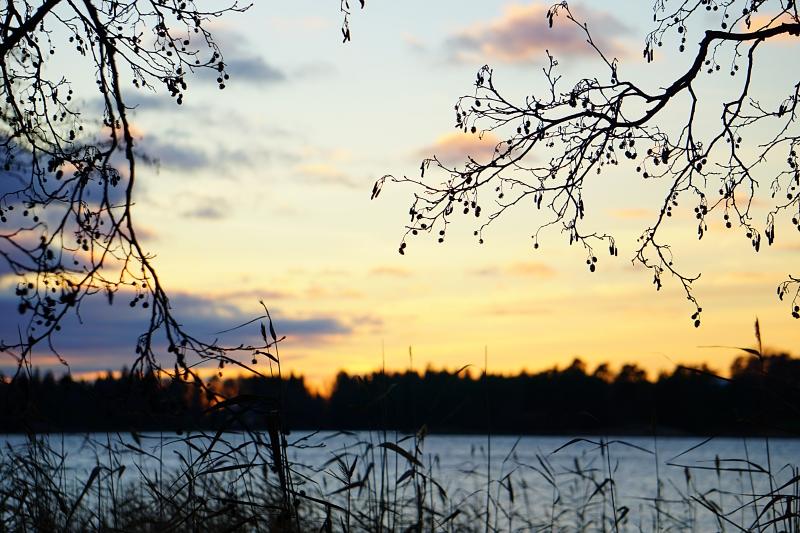 Kaamos, auringonladku, marraskuu