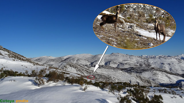 Ruta circular por la Sierra de la Filera, desde Abelgas de Luna en León.