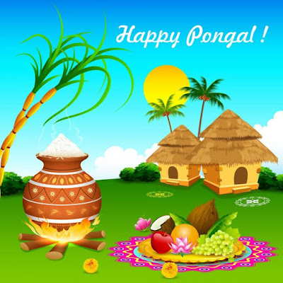 Pongal Wishes 2019