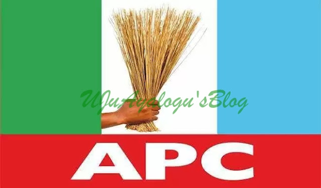 Izunaso, Araraume, Others Storm Out Of APC Stakeholders' Meeting