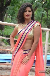 Actress-Pavani-Latest-Stills-in-Saree