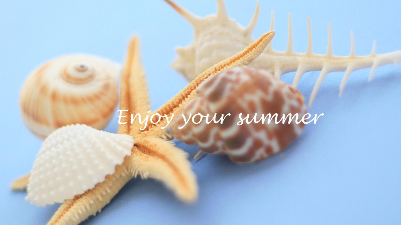 seashells wallpaper collection - photo #17