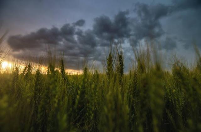 Perdesaan di Rumania Terlihat Bak Negri Donggeng, Ternyata Butuh 10 Tahun Untuk Proses Pemotretannya