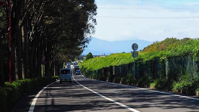 2020東京オリンピック・ロードレース競技コースの序盤を多摩境までたどり、尾根緑道~境川~尾根幹道でスタート地点の武蔵野の森公園まで戻るサイクリングコース。