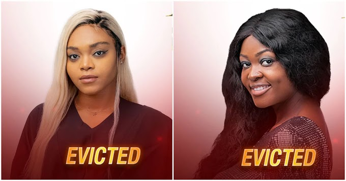 BBNaija2020: Moment housemates voted two contestants out of Big Brother's house (video)