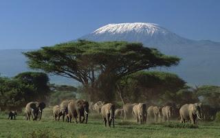 Turismo verde y sostenible en Kenia