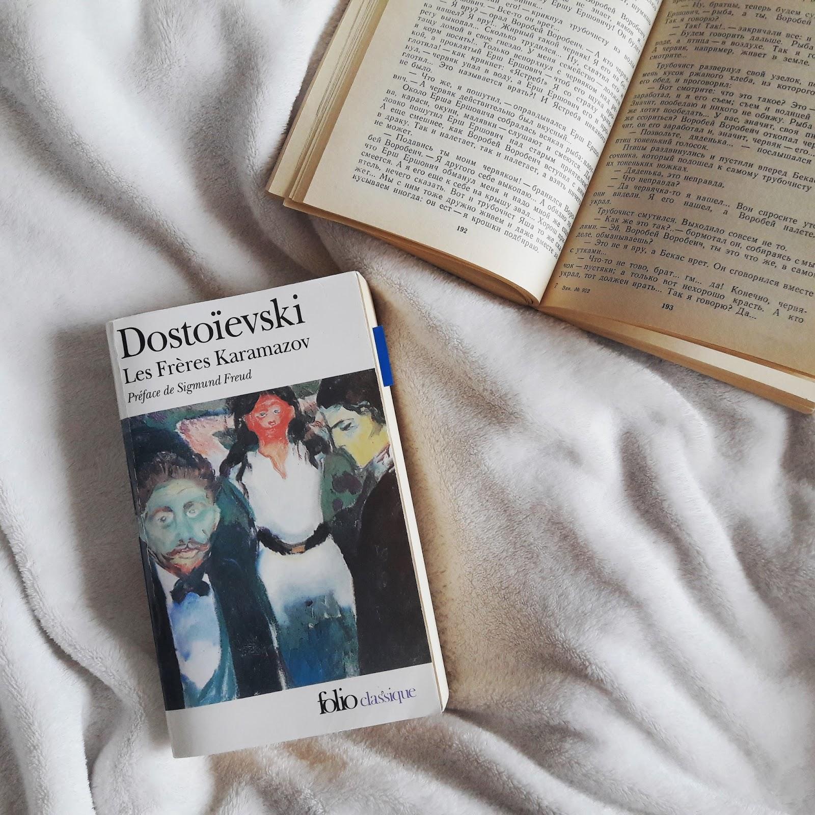 Les frères Karamazov   de Fedor Dostoïevski