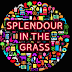 NEWS: Splendour in the Grass Have Unleashed A Mammoth Line Up