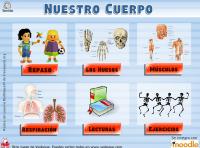 http://www.vedoque.com/juegos/juego.php?j=El-Cuerpo