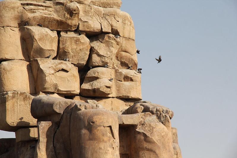 memnon egypt