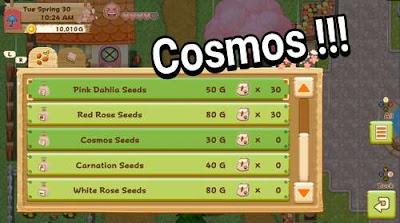 Cara Mendapatkan Cosmos di Harvest Moon: Light of Hope