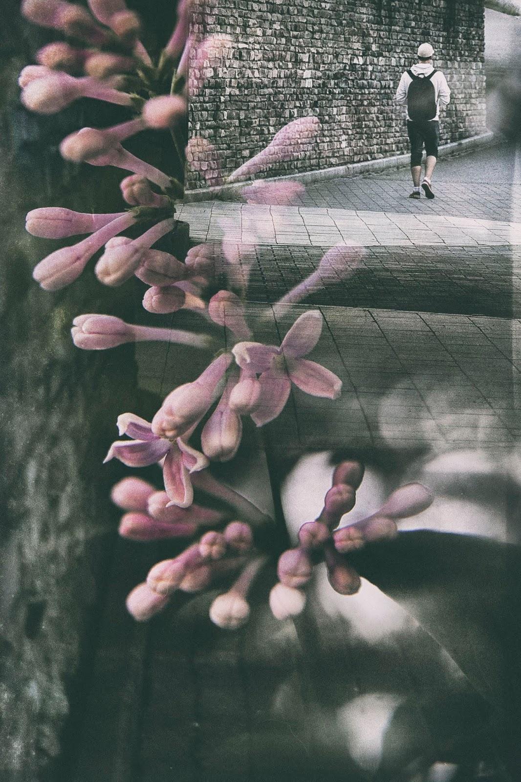 valokuvaus, streetart, streetphotography, double exposure, tuplavalotus, Canon, valokuvaus, Valokuvaaja, Frida Steiner, Visualaddict, visualaddictfrida, taidevalokuvaus, kokeileva valokuvaus, photographerlife, suomi, finland, espoo