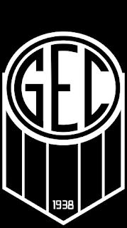 Jogadores e membros da comissão técnica reclamam de atraso de salários no Goiânia