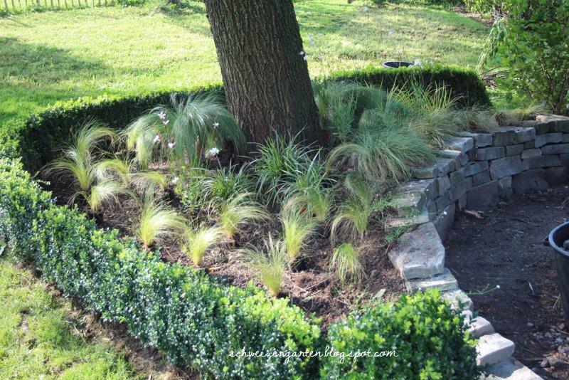 Die Schönsten Gräser Für Den Garten vorgarten mit gräsern gestalten die schönsten einrichtungsideen