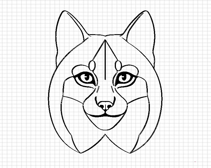 Lynx facial features fill drawing
