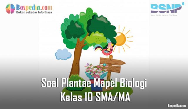 Soal Plantae Mapel Biologi Kelas 10 SMA/MA