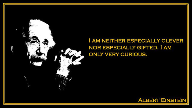 I am neither especially clever nor especially gifted Albert Einstein quotes
