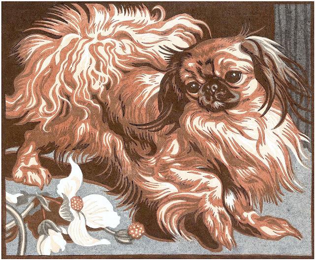 Norbertine von Bresslern-Roth, a small dog