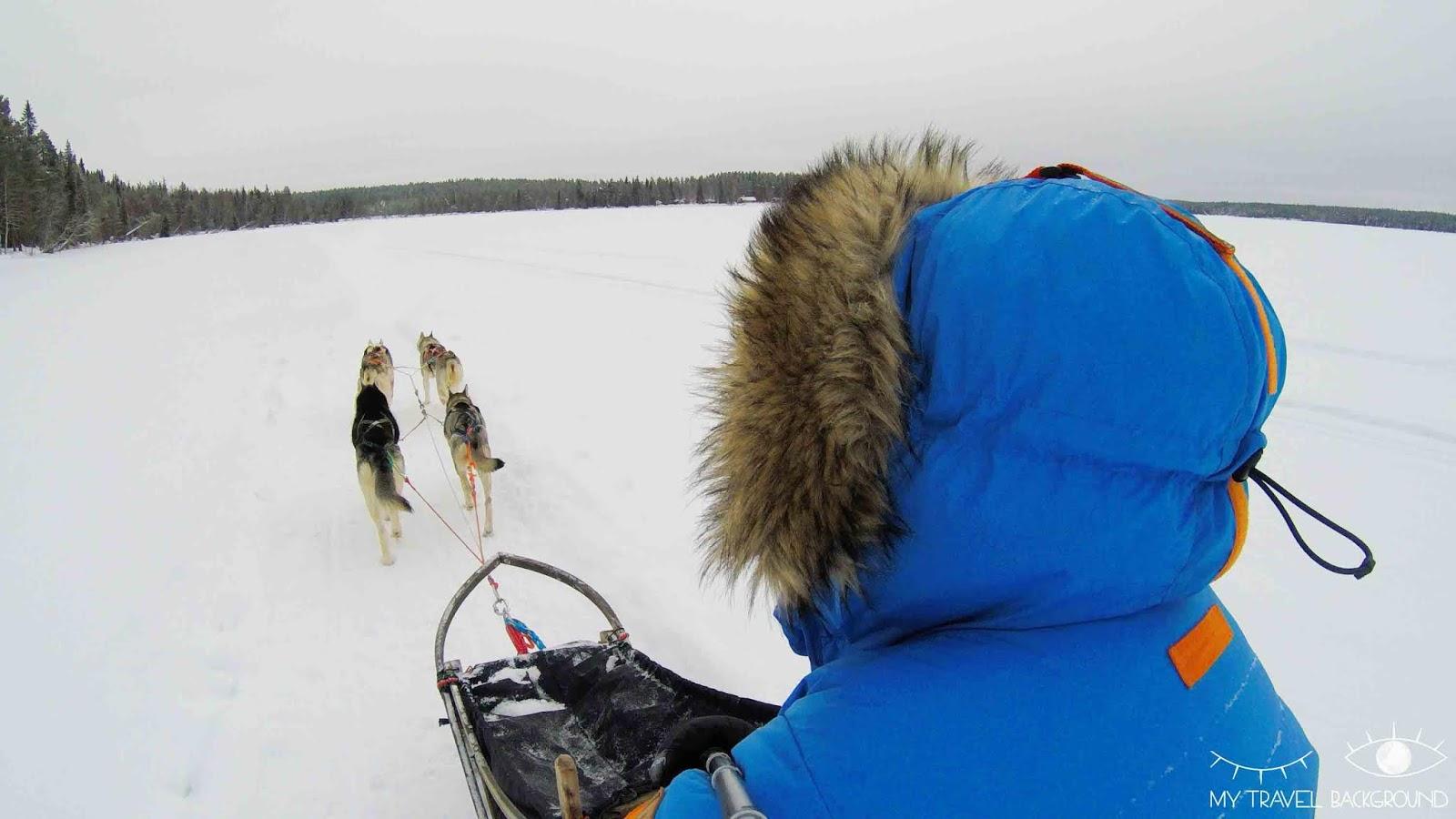 My Travel Background : road trip de 10 jours autour de la mer baltique : Danemark, Finlande, Estonie - Chien de traîneau à Rovaniemi, Finlande