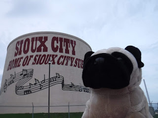 "a pug appears next to a beige water towel with the words ""Sioux City Home of Sioux City Sue"" painted in red and some musical notes and staffs in black"